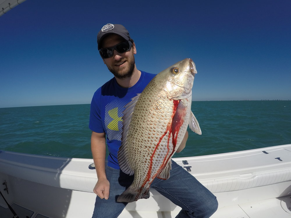 Grouper-Deep-Sea-Fishing-Charter-Offshore-Bonita-Springs-Nauti-Gal Fishing Adventures-Mangrove Snapper