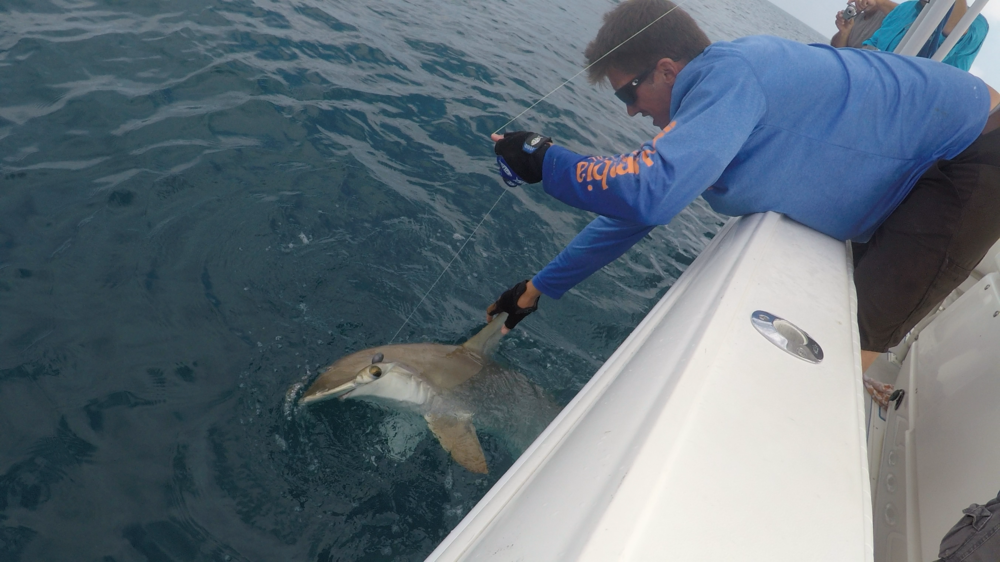 Shark-Fishing-Naples-Florida-Charter