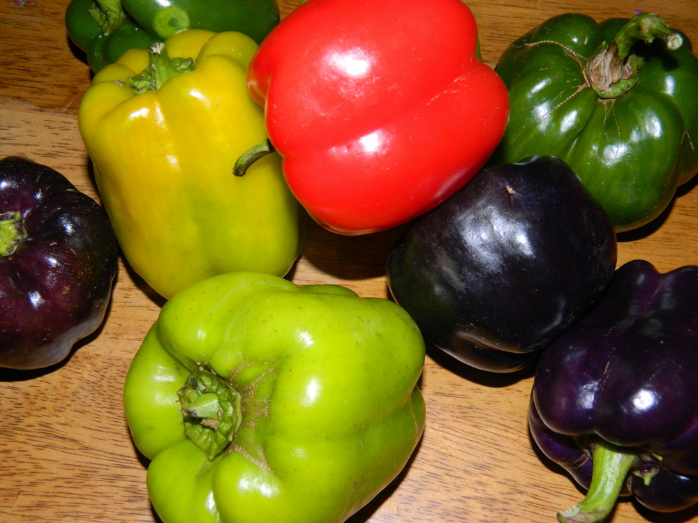 peppers - Bell, Sweet, Fryer, Hot