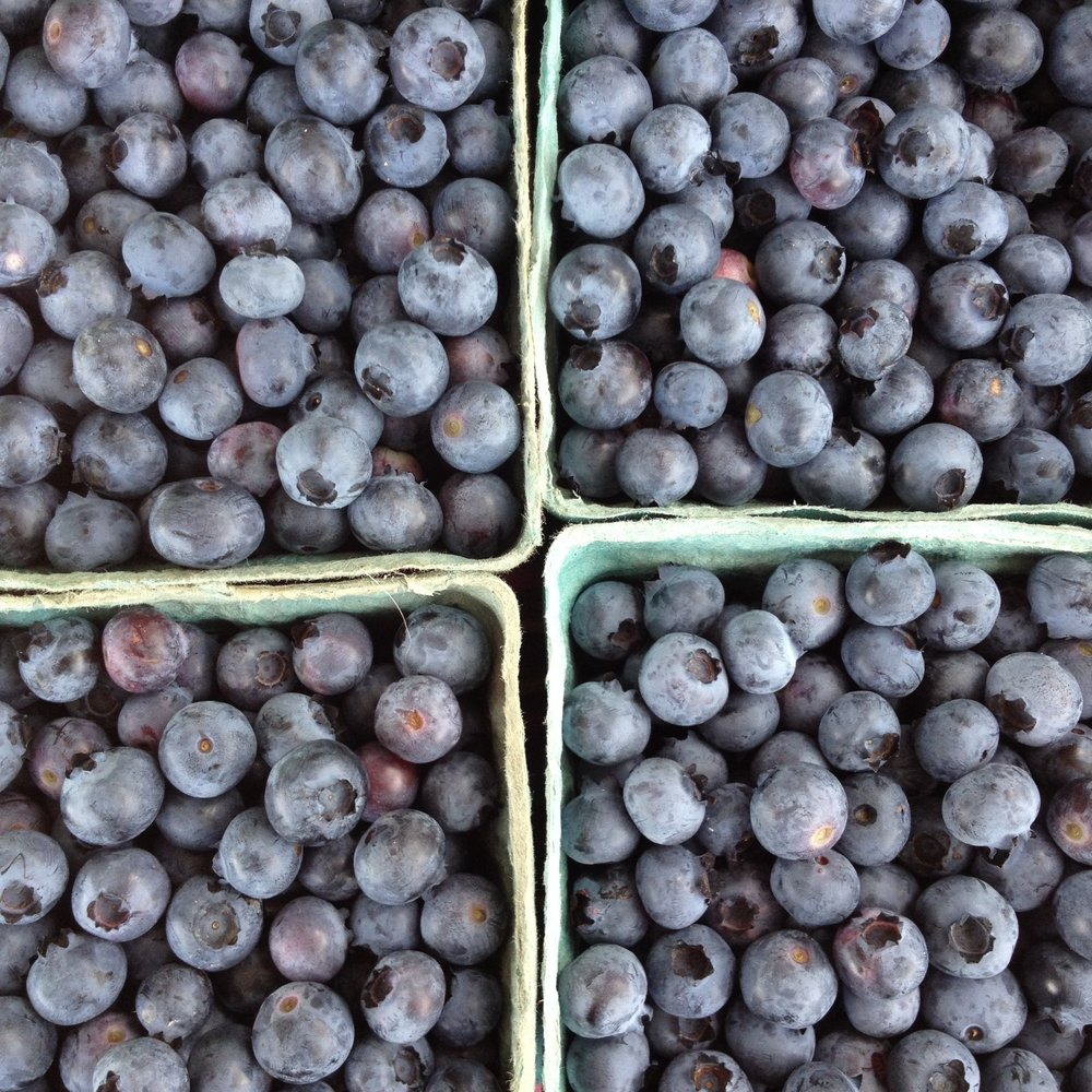 FRUIT - Blueberries