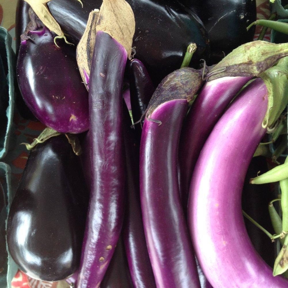 eggplant - Italian, Japanese, Sicilian