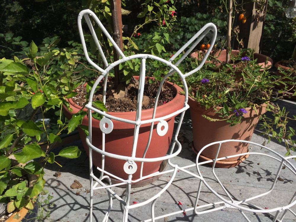 Margaret friend sprayed the metal cat plant stand white to match the white cat named after her.