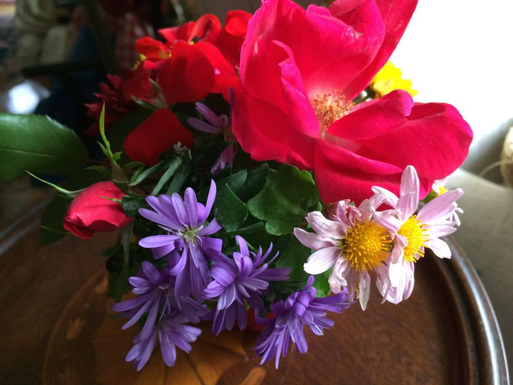 Tiny fall flowers bouquet from Bluebird Gardens.