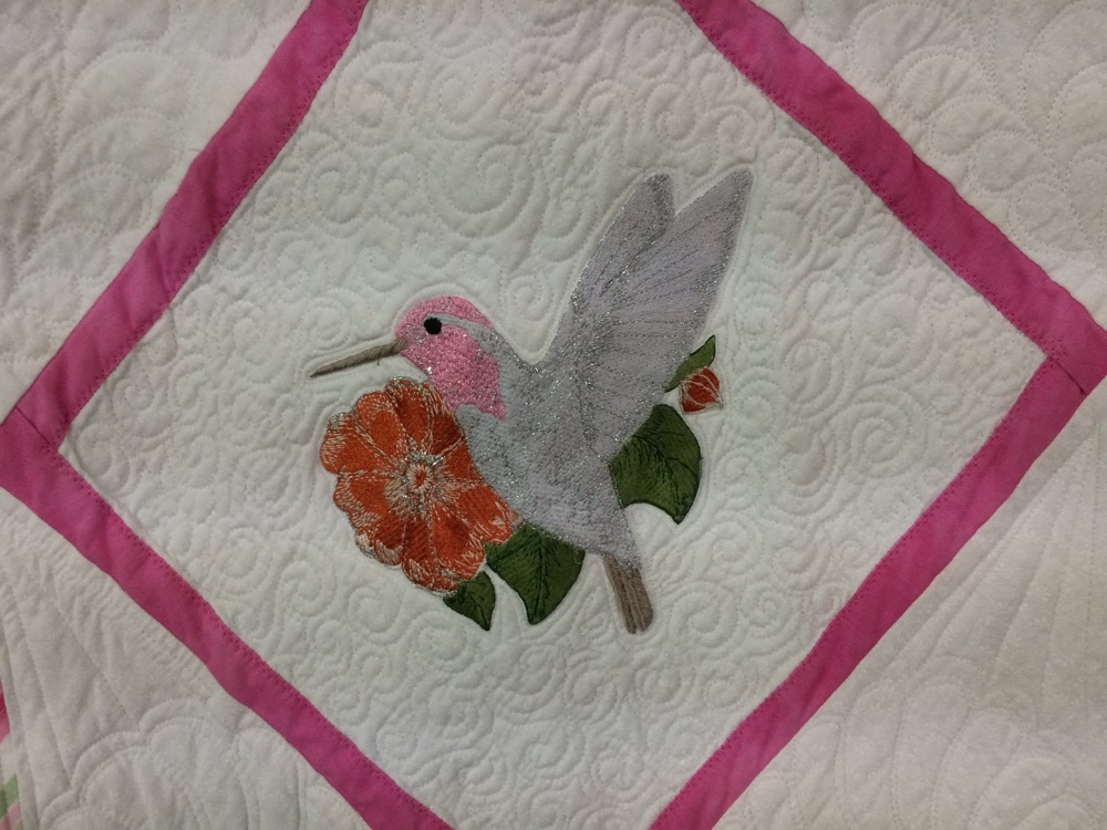 One more hummingbird on an orange flower against a quilted white cotton background.
