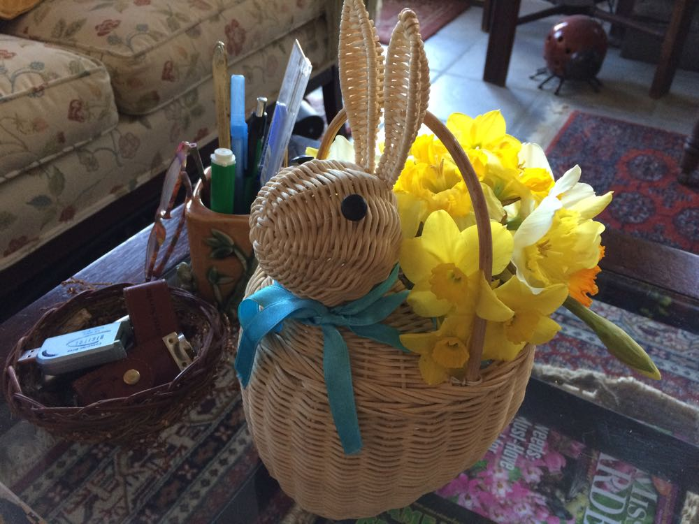 Bunny basket holding fresh-cut daffodils on my den coffee table.