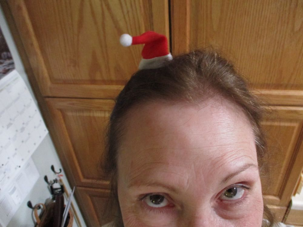 I put my tiny Santa hat on again tonight so you can see the hat being worn.