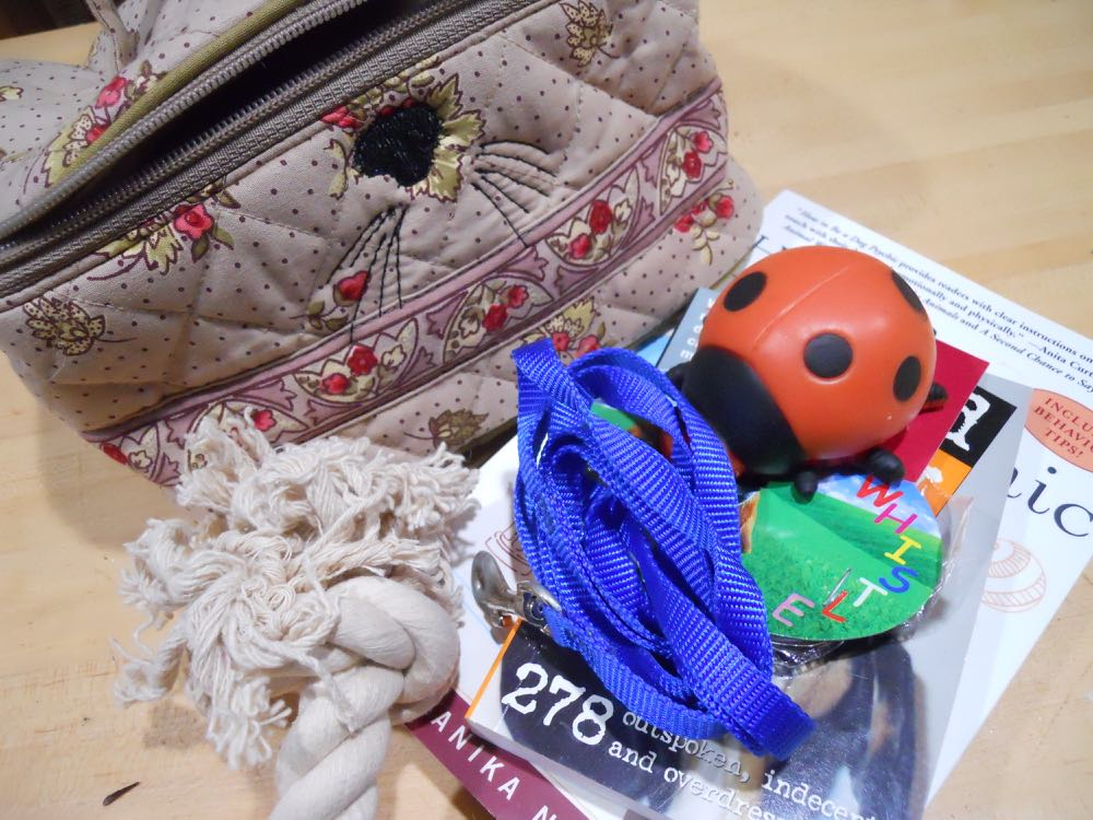 Dog toys and useful items fill the personalized travel bag as a gift for a new family addition.