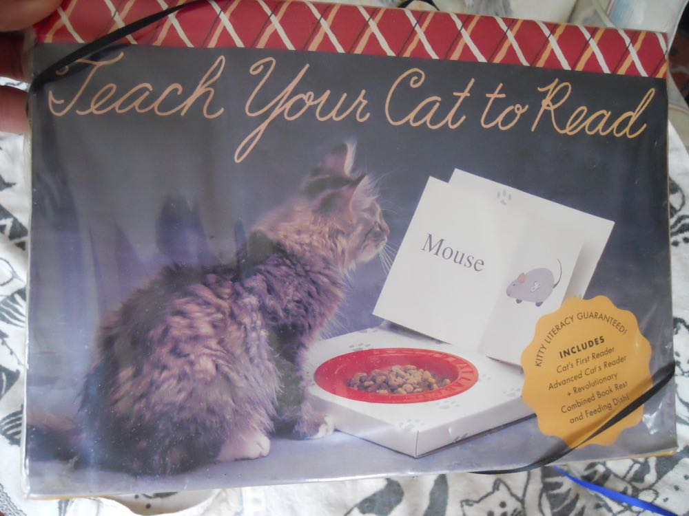 "This was the charming ""teach your cat to read"" kit a friend gave me for Christmas."