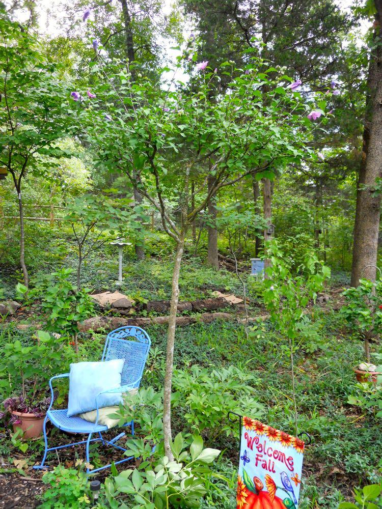 garden flags fall.jpg