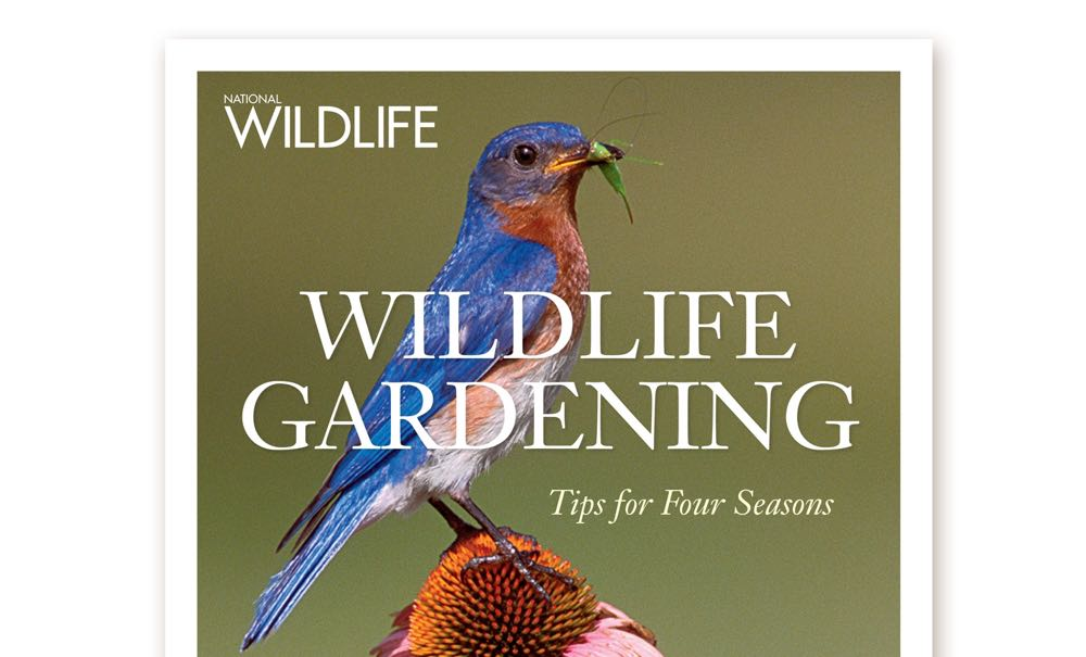 wildlife gardening book.jpg