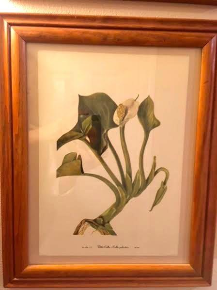Flower print thick frame.jpg