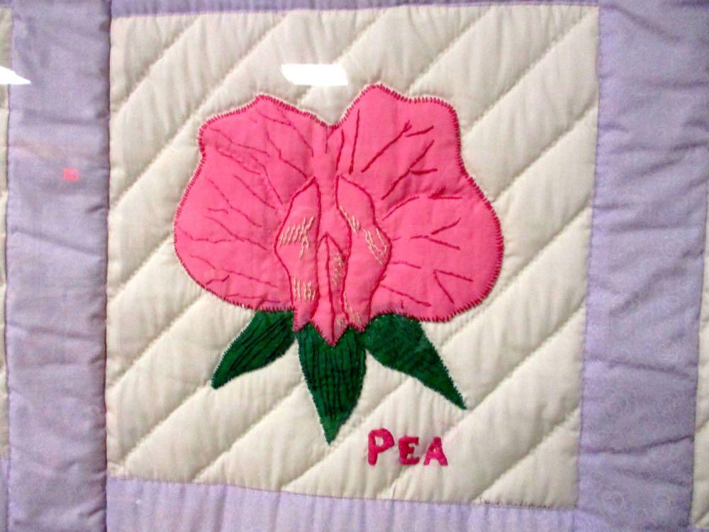 Wildflowers quilt pea.jpg