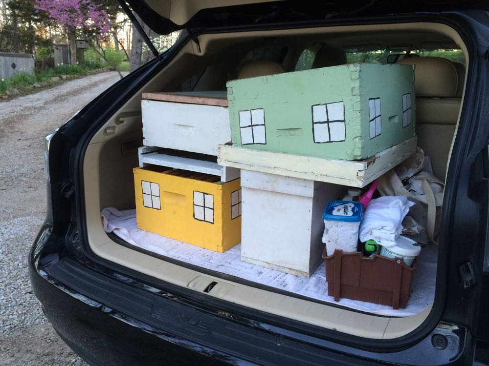 My car packed for swarm-catching with both a ten-frame hive and a nuc.