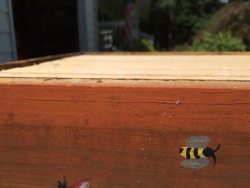 Isn't this a sweet little painted bee?