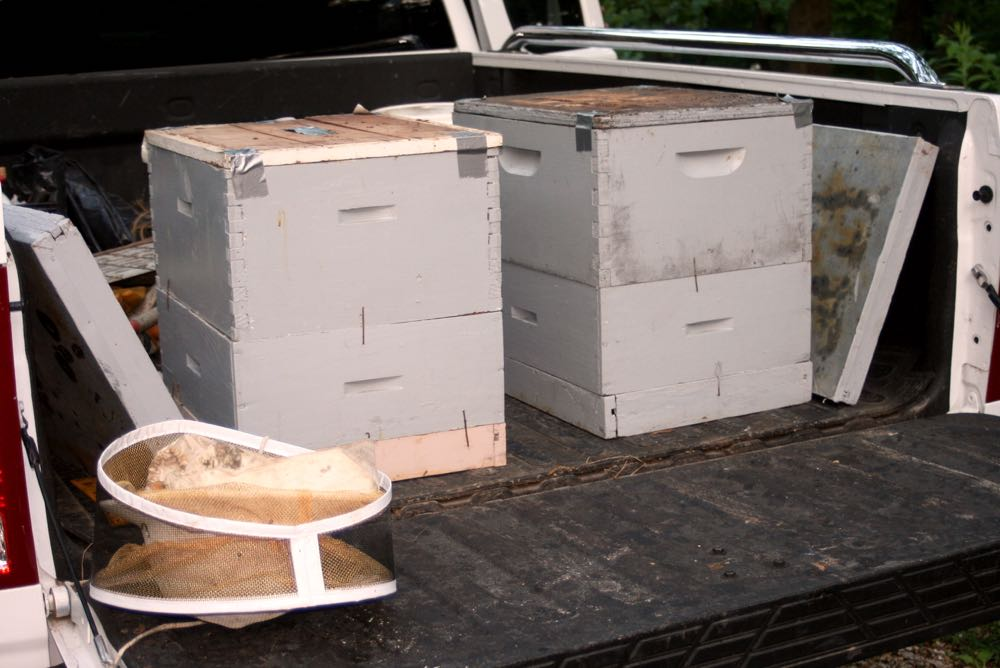 My first two bee colonies arriving at my Missouri apiary.