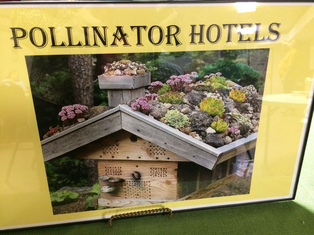 This fancy pollinator hotel even has a roof full of low maintenance blooming succulents.