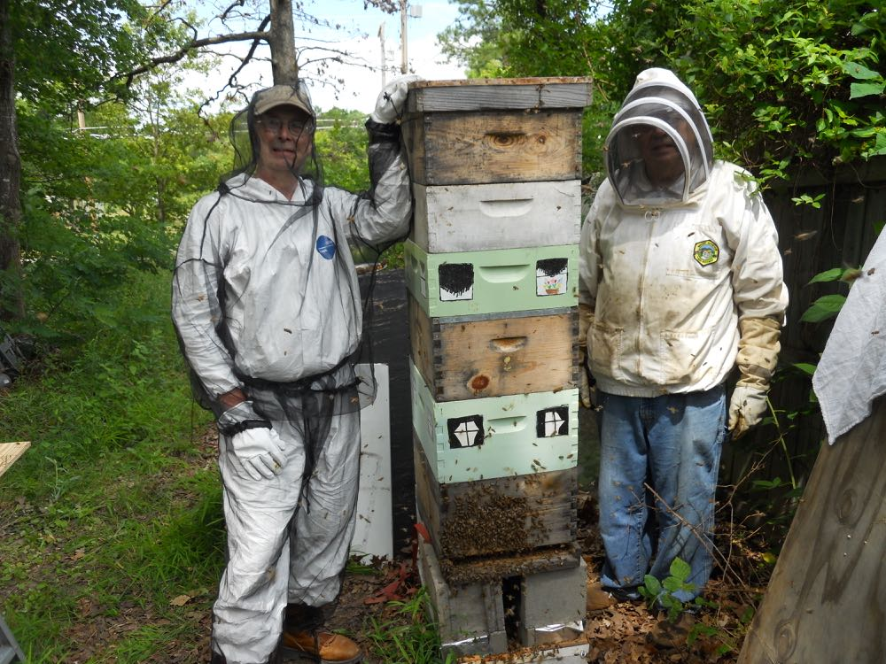 Kelly S. Bracken, left, and David Draker, right, after the colony is back in their expanded hive.