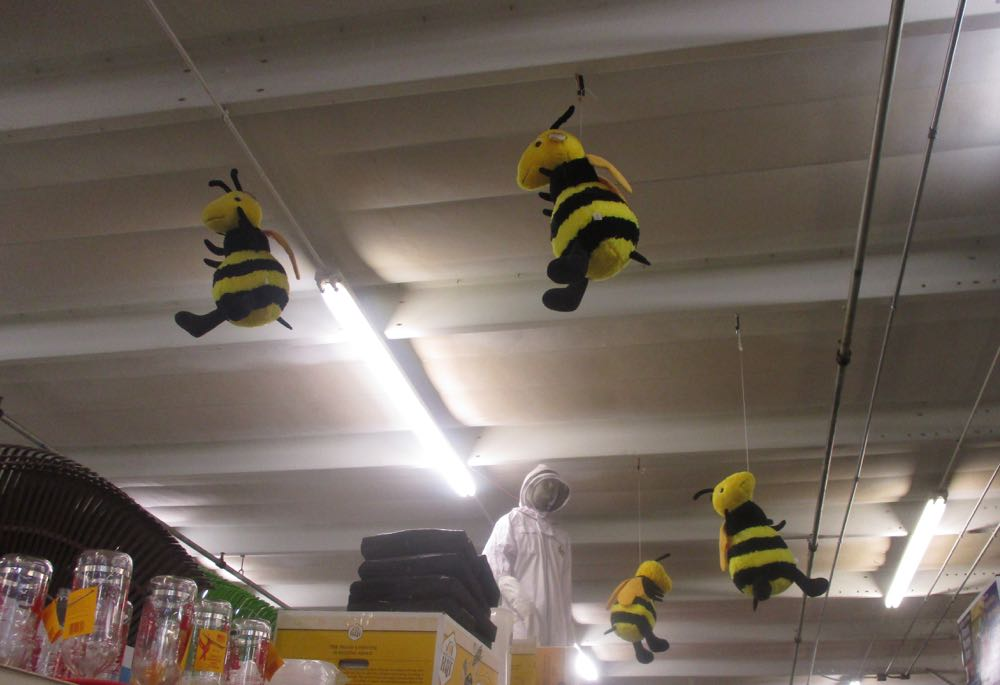 A sure sign of the store beekeeping section, bees flying overhead!