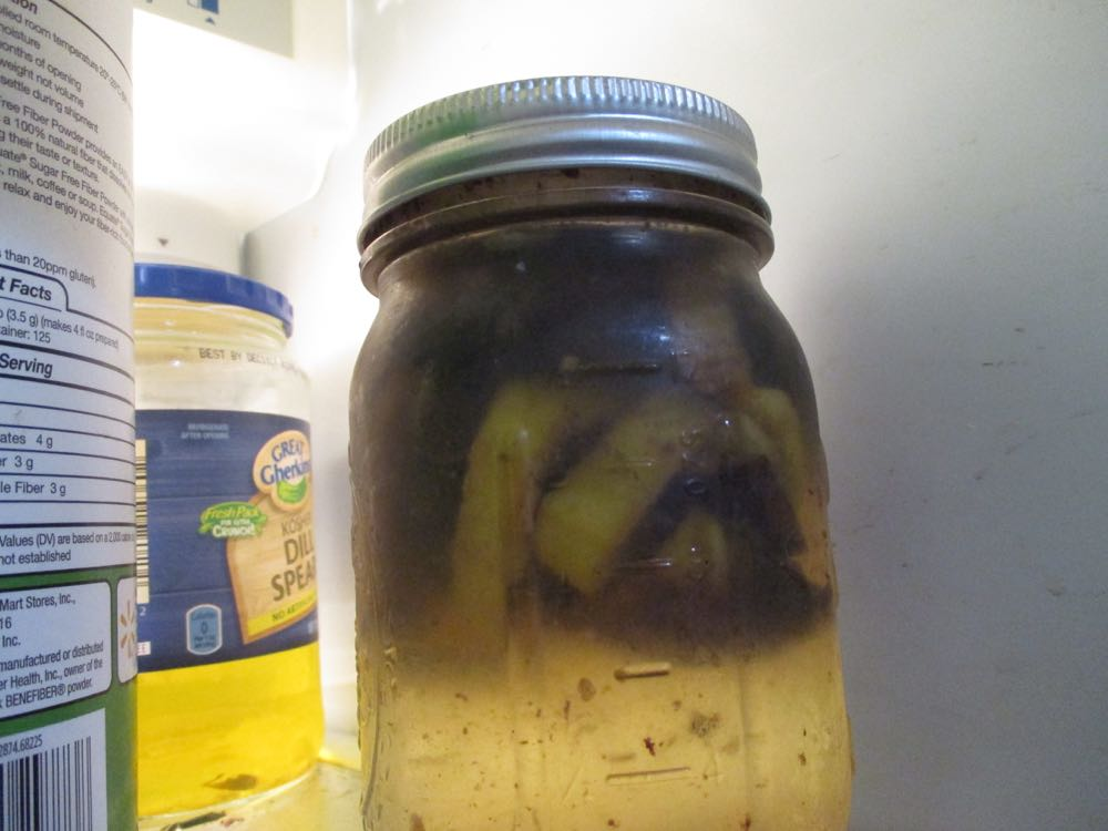 This is a jar of small hive beetle lure in my refrigerator for identification training purposes.