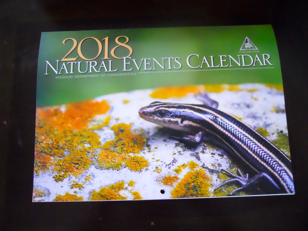 Gorgeous photography is another wonderful element of these lovely $10 calendars.
