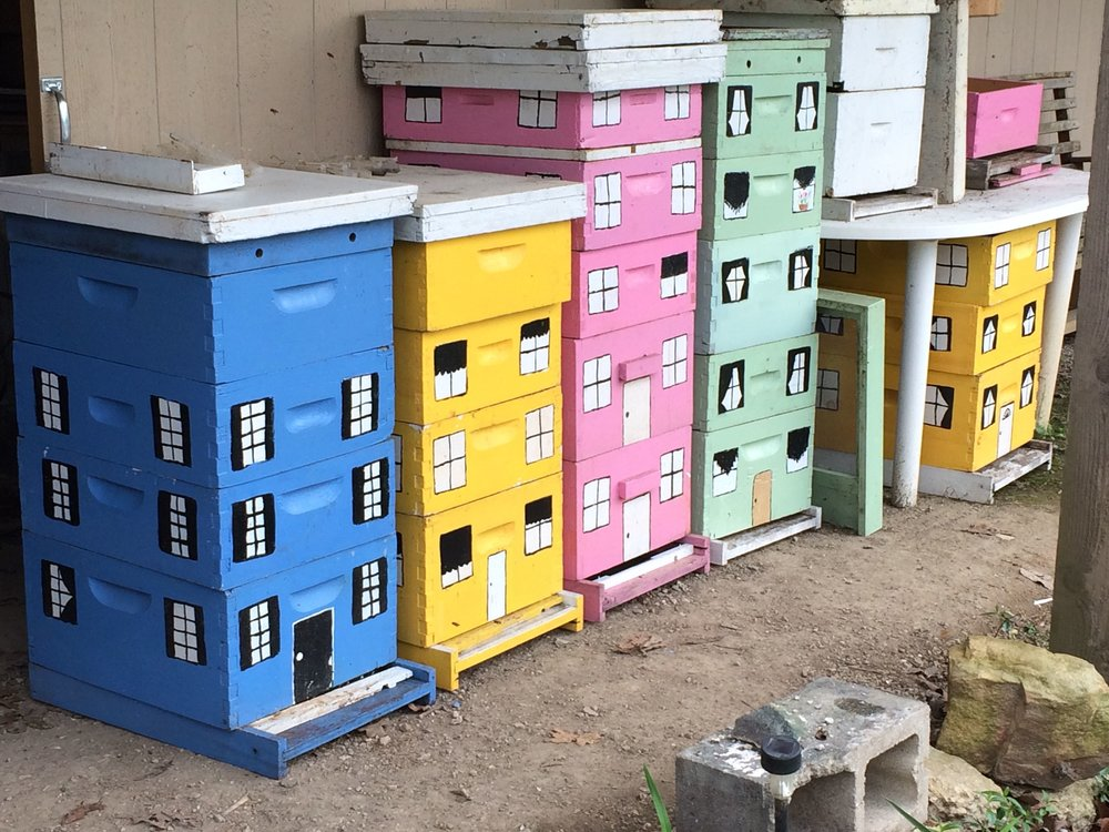 Some of my first painted bee hives repainted from their original drab grey color.