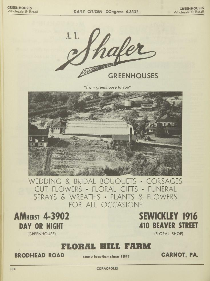 The Daily Citizen 1956 Trade Area Directory Pg 334.jpg