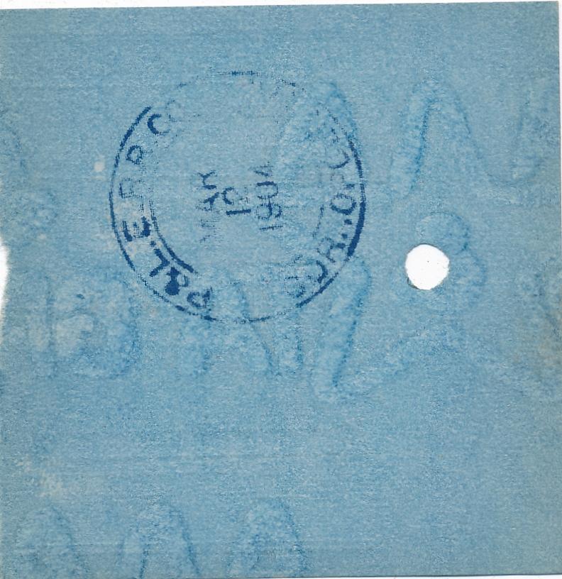 204b.jpg