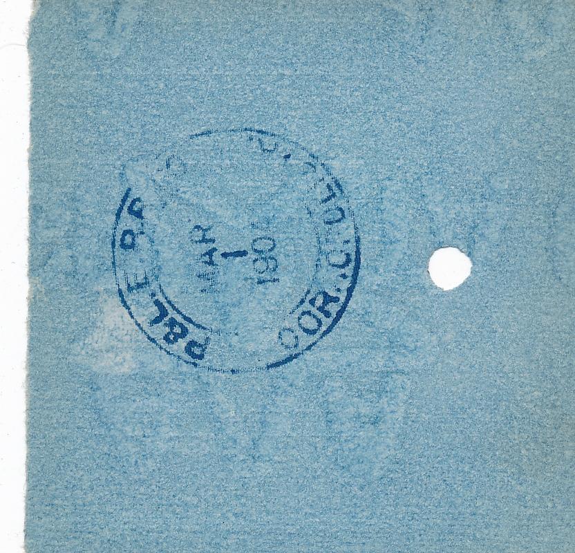 301b.jpg