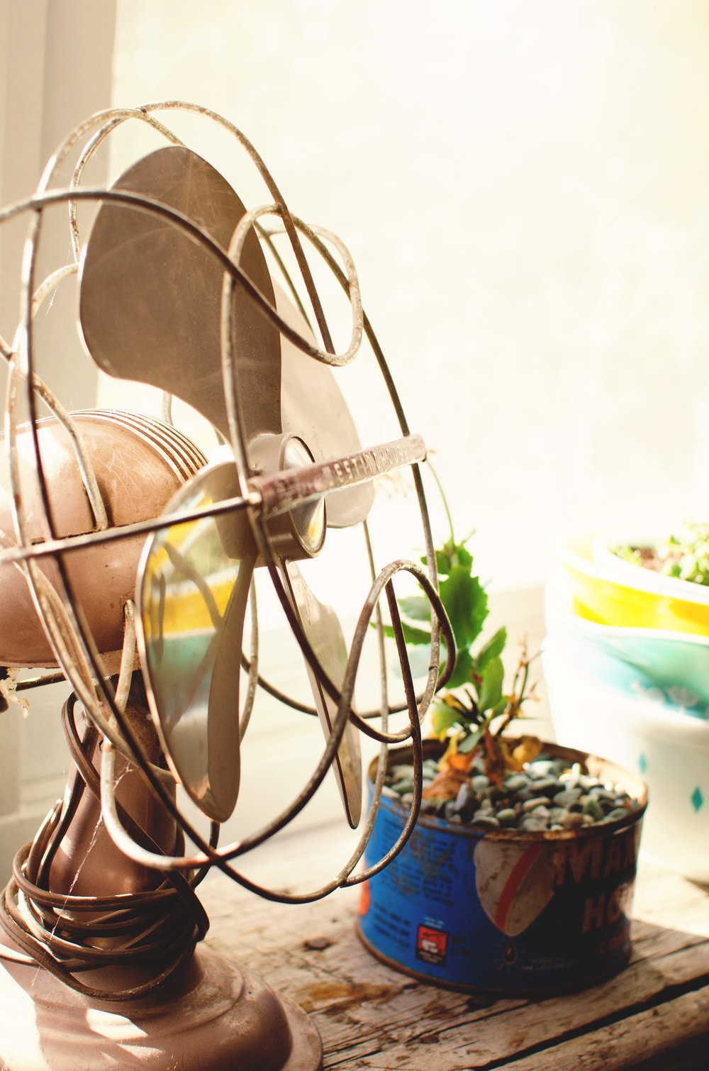 Vintage fan with a potted plant in a vintage can. H.Prall & Co. | hprallandco.com