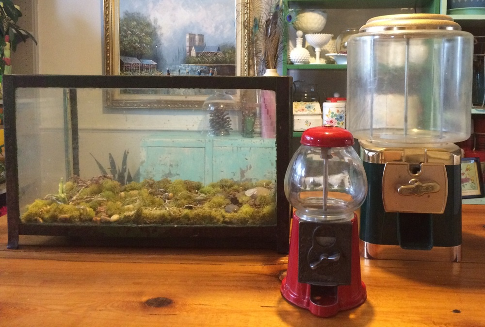 Aquarium and 2 gumball machines for DIY terrarium projects. || RustopiaConsulting.com