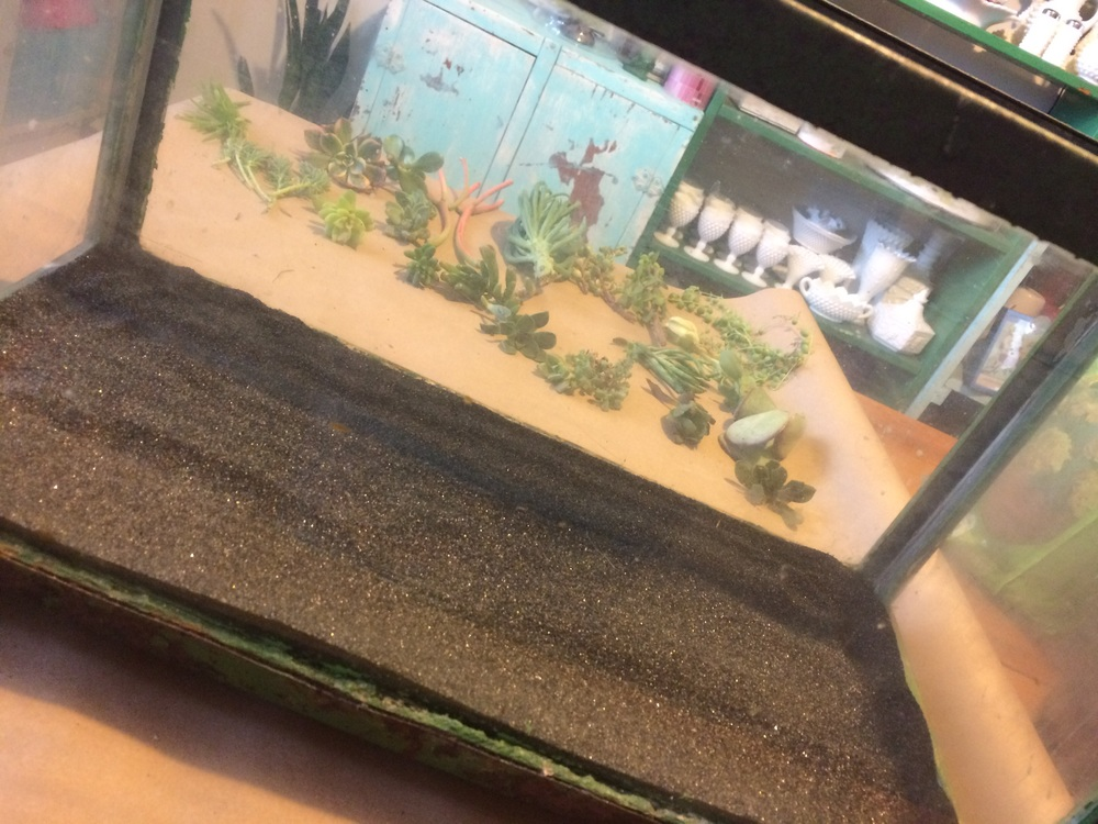 A layer of sand at the bottom of an aquarium being used to create a DIY terrarium. || RustopiaConsulting.com