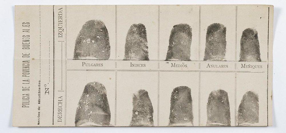 Francisca Rojas' fingerprints Source:Dirección Museo Policial–Ministerio de Seguridad de la Provincia de Buenos Aires, Argentina