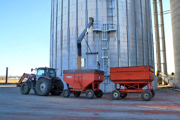 Victoria-County-Grains-Shipping.jpg