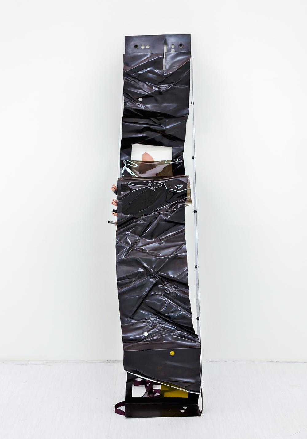 Alisa_Baremboym_Taipei-Biennial_2014_Amphicense-Systems-3.jpg
