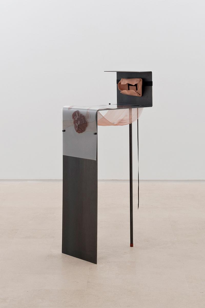 Alisa-Baremboym-Miguel-Abreu-Gallery-Porous-Solutions_2_2014.jpg