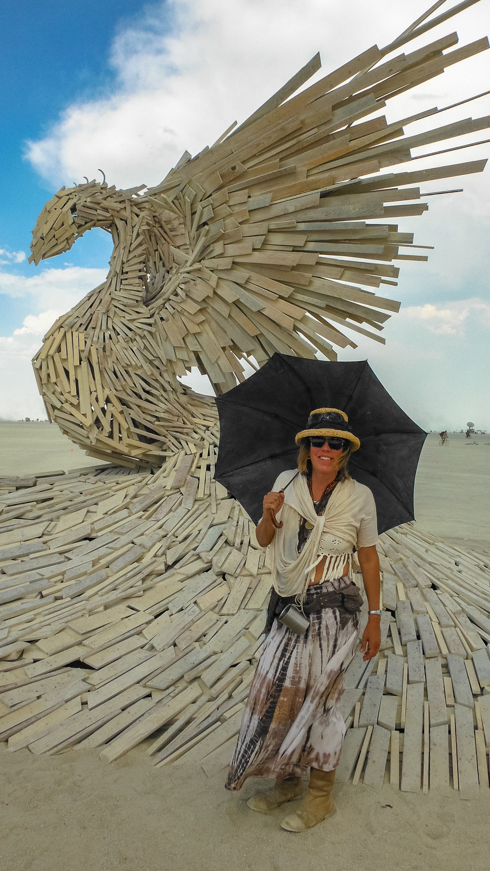 Phoenix Rising  by Nicholas Palmer, and me before it burned and crashed.