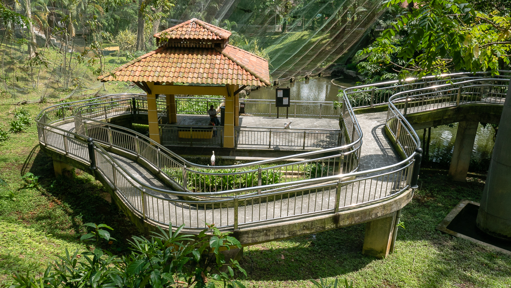 Some of the walkaways within the KL Bird Park.