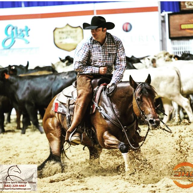 Congrats to all the Open Classic Challenge Finalists at this years NCHA Summer Spectacular! Team GS was fortunate enough to make the finals on three horses- Ichis My Choice owned by J 5 Horse Ranch Management, Metallic Mistress owned by Texas Holy Cow Performance Horses and Two Time Dual owned by Jimmy Baros. Good luck to everyone tomorrow evening! @bexsunglasses #bexsunglasses @wrangler #wrangler @brokentboots #brokentboots @resistol1927 #weliveiteveryday @platinumperformance #platinumperformance @iconoclastboots #iconoclastboots @lucasoilproducts #protecttheharvest @roohidesaddlery #roohidesaddlery @biogelbiowash #biowash @cactussaddlery @cactusgear #cactussaddlery #cactusgear @vroom #vroom