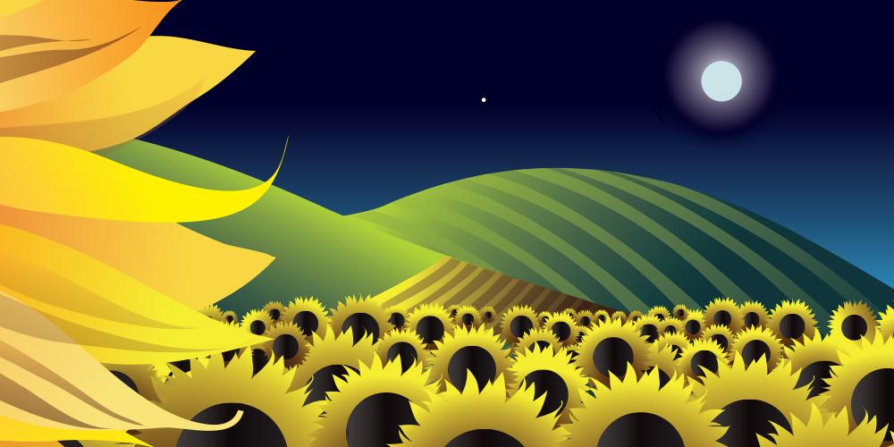 suncupx.jpg