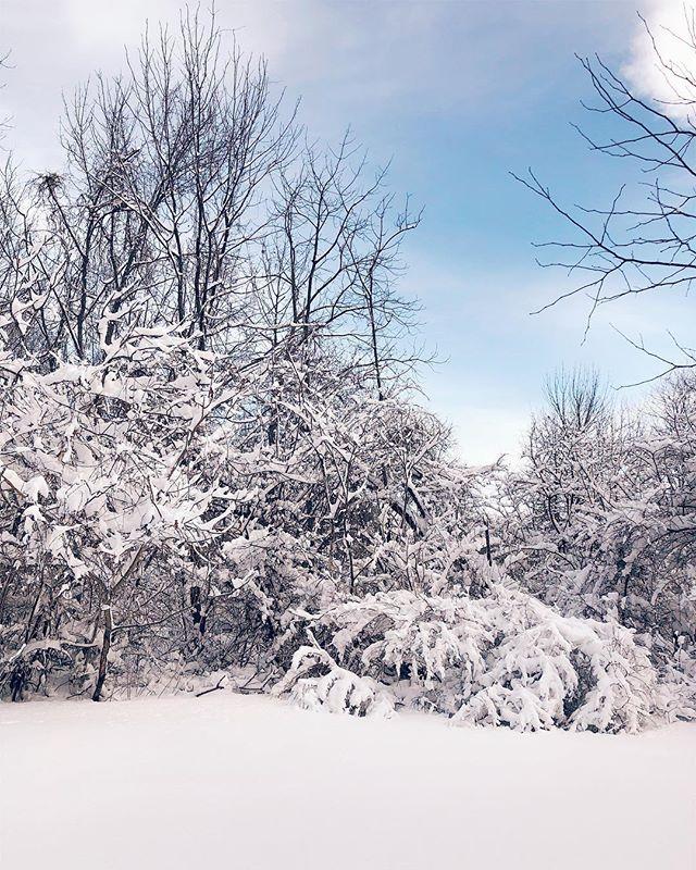 obstruction #snow #spring #climatechangeisreal #vsco