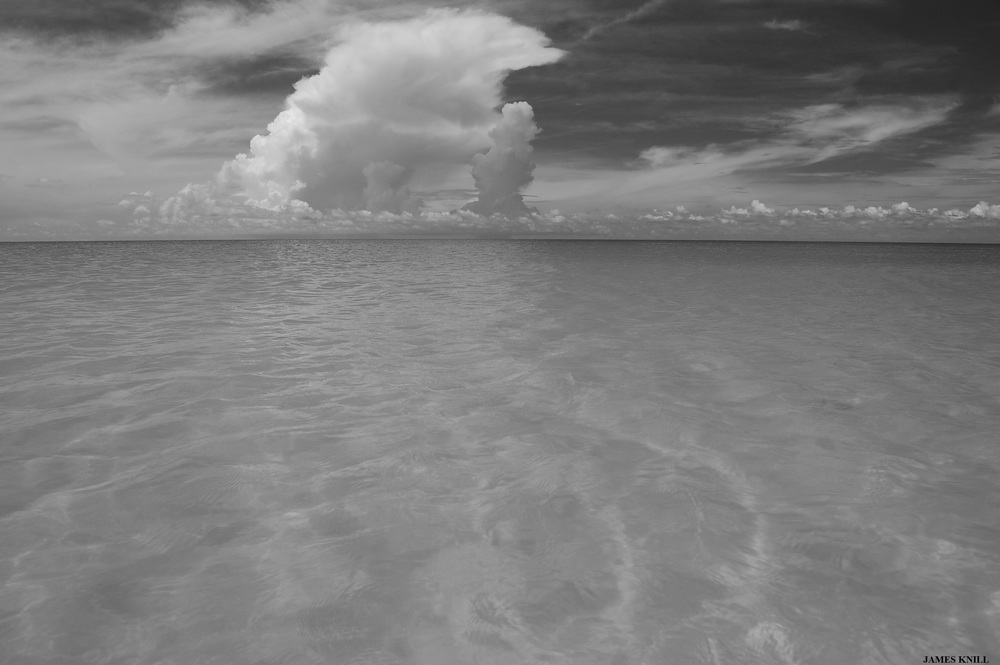 Tropical Winds Surreal Cloud Black and White