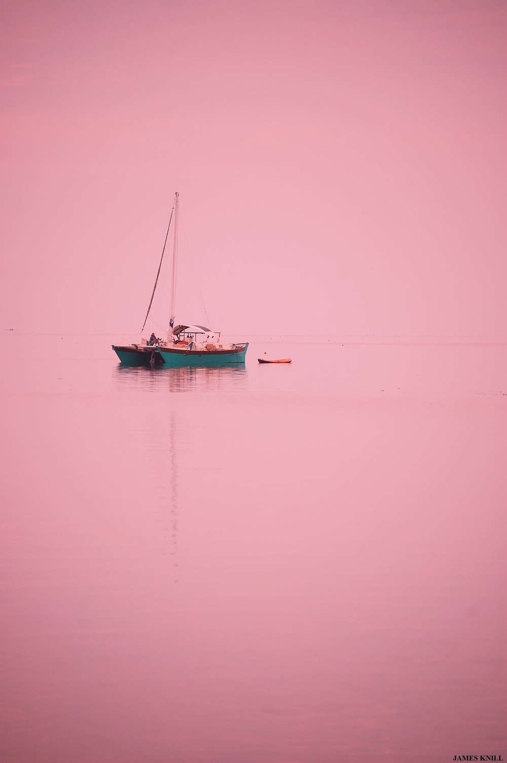 Boat in Pink Vertical