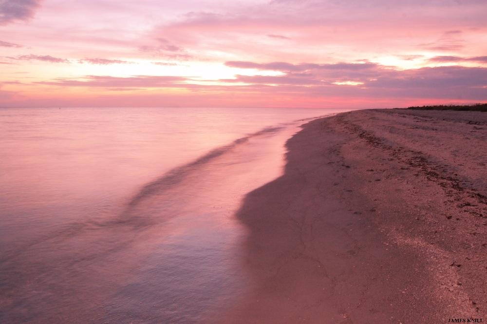 Pink Beachscape