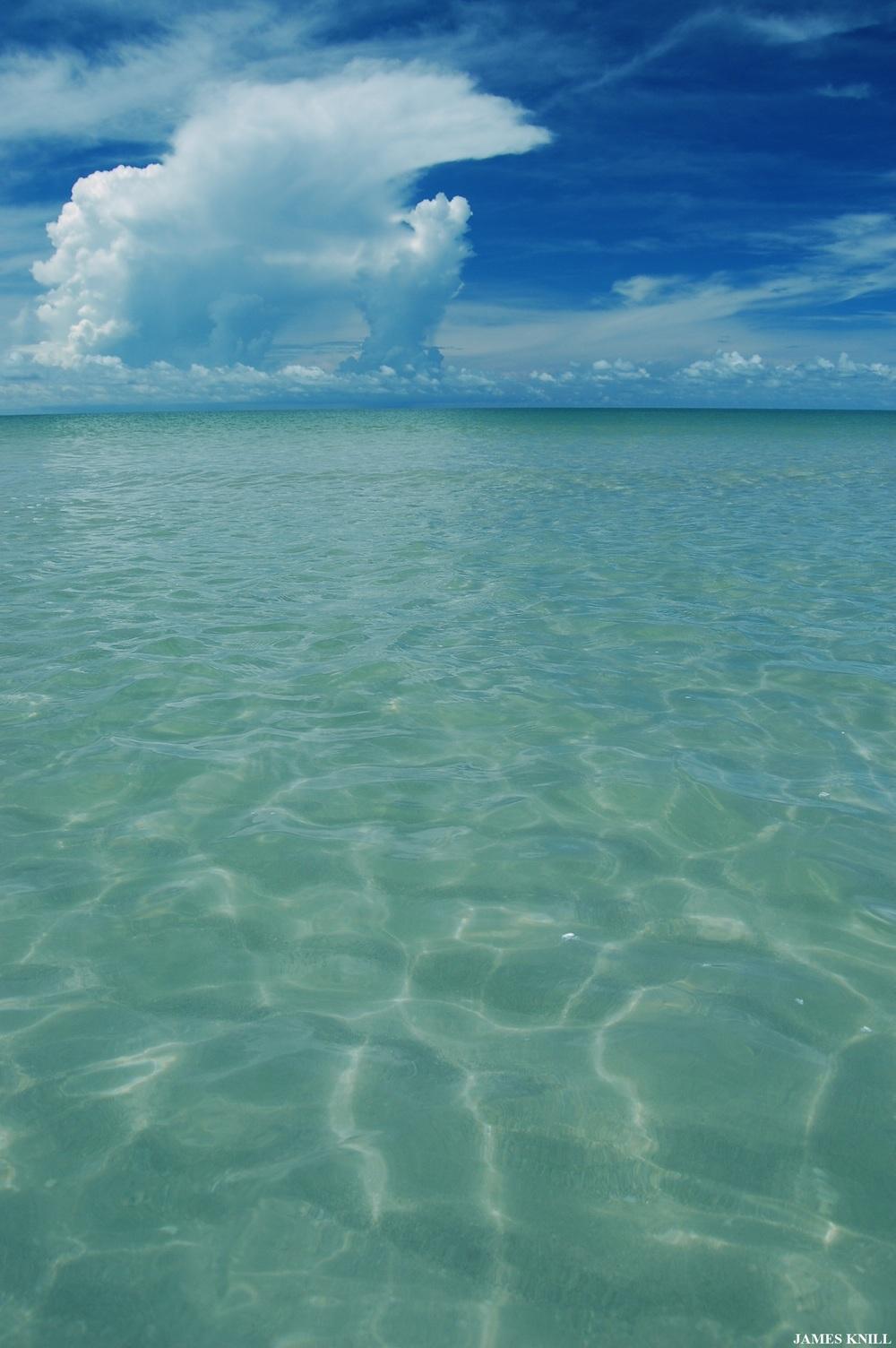 sanibel island6.jpg