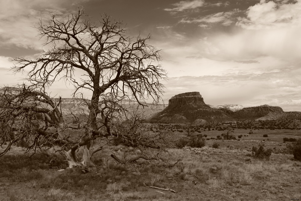Ghost Ranch Landscape Sepia