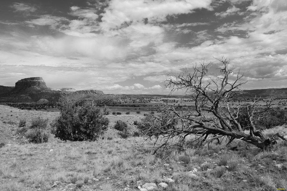Ghost Ranch Black and White