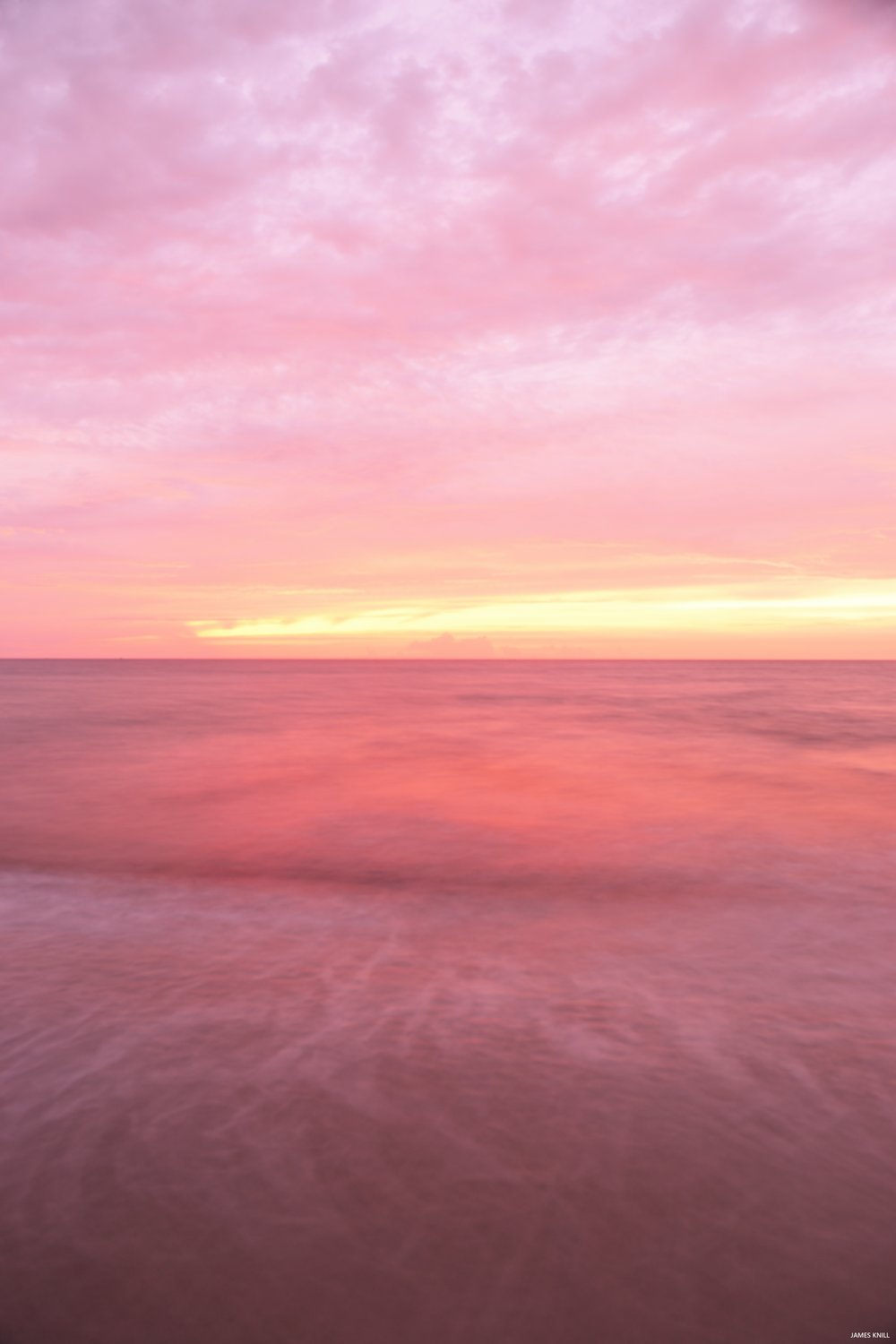 Pink Lemonade Dawn Vertical