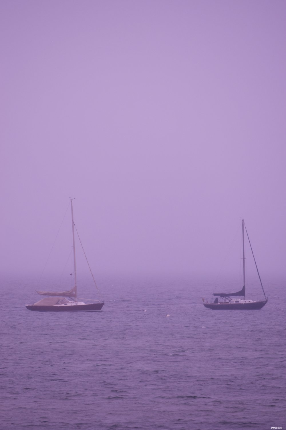 Purple Boat