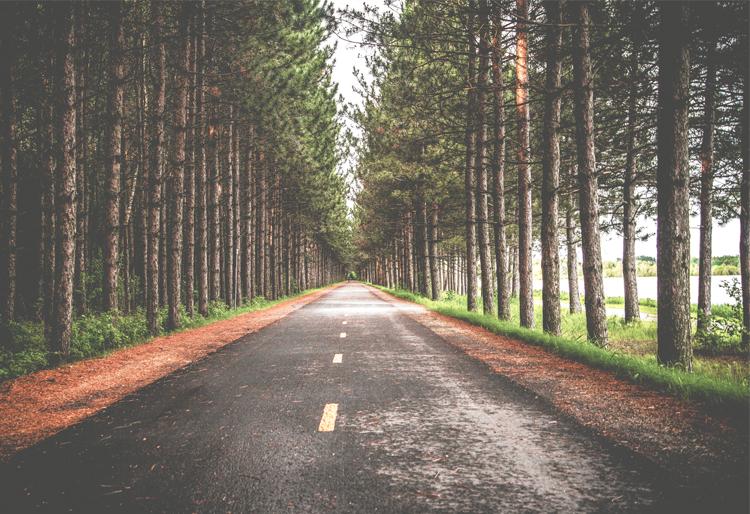 web_road.jpg
