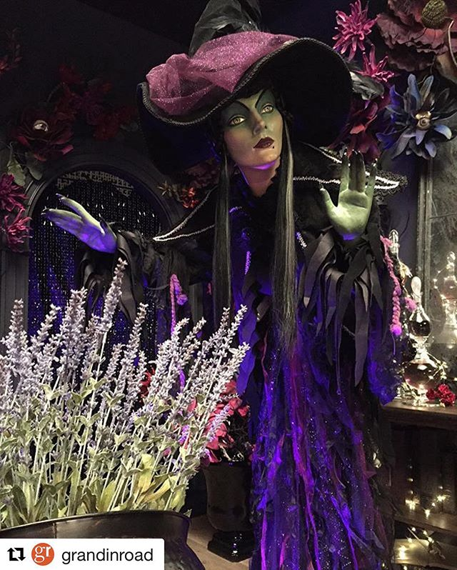 #Repost @grandinroad ・・・ Halloween will be here before you know it! Get in the spirit and check out our Minerva Discordia Witch featured @grandinroad and in our Midnight Magic collection